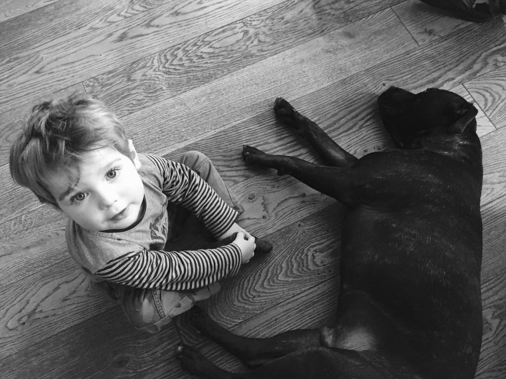 animali-e-bambini-disabili.jpg